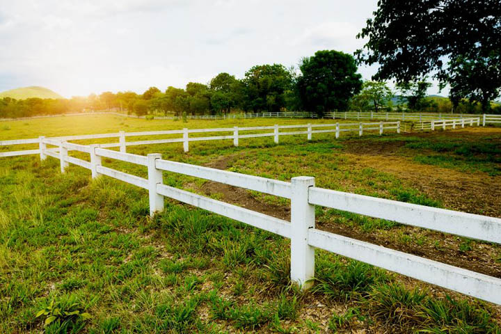 A white fence in a pasture representing boundaries in a relationship.