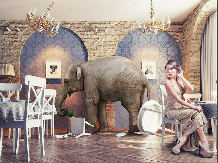 Beautiful woman sitting in chair faces her fear which is the elephant in the room behind her.